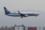 mocohide☆さんが、福岡空港で撮影した全日空 737-881の航空フォト(写真)
