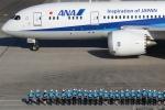 GNPさんが、羽田空港で撮影した全日空 787-8 Dreamlinerの航空フォト(写真)