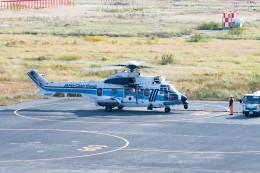 Astechnoさんが、関西国際空港で撮影した海上保安庁 EC225LP Super Puma Mk2+の航空フォト(飛行機 写真・画像)