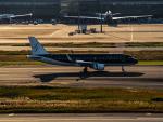 名無しの権兵衛さんが、羽田空港で撮影したスターフライヤー A320-214の航空フォト(写真)