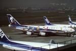 tassさんが、羽田空港で撮影した全日空 747-481(D)の航空フォト(飛行機 写真・画像)
