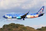 虎太郎19さんが、福岡空港で撮影した中国聯合航空 737-8HXの航空フォト(写真)