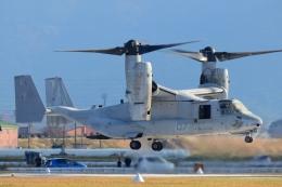 LUCHObyNOSAさんが、明野駐屯地で撮影したアメリカ海兵隊 MV-22Bの航空フォト(飛行機 写真・画像)