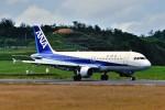デデゴンさんが、石見空港で撮影した全日空 A320-211の航空フォト(写真)