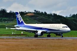 デデゴンさんが、石見空港で撮影した全日空 A320-211の航空フォト(飛行機 写真・画像)