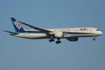 FY1030さんが、新千歳空港で撮影した全日空 787-9の航空フォト(写真)