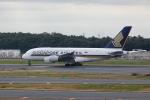 pringlesさんが、成田国際空港で撮影したシンガポール航空 A380-841の航空フォト(写真)