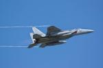 いぬ_さんが、三沢飛行場で撮影した航空自衛隊 F-15J Eagleの航空フォト(写真)