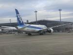 ヒロリンさんが、成田国際空港で撮影した全日空 787-8 Dreamlinerの航空フォト(写真)