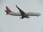 commet7575さんが、福岡空港で撮影したイースター航空 737-8Q8の航空フォト(写真)