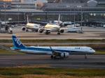 名無しの権兵衛さんが、羽田空港で撮影した全日空 A321-272Nの航空フォト(写真)