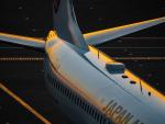 名無しの権兵衛さんが、羽田空港で撮影した日本航空 737-846の航空フォト(写真)