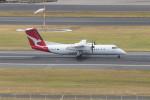 Koenig117さんが、シドニー国際空港で撮影したイースタン・オーストラリア・エアラインズ DHC-8-315Q Dash 8の航空フォト(写真)