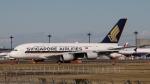 raichanさんが、成田国際空港で撮影したシンガポール航空 A380-841の航空フォト(写真)