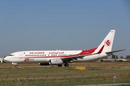 安芸あすかさんが、パリ オルリー空港で撮影したアルジェリア航空 737-8D6の航空フォト(飛行機 写真・画像)