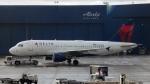 Bluewingさんが、シアトル タコマ国際空港で撮影したデルタ航空 A319-114の航空フォト(写真)