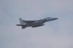 tasho0525さんが、那覇空港で撮影した航空自衛隊 F-15DJ Eagleの航空フォト(飛行機 写真・画像)
