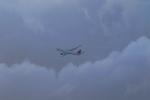 Hiro-hiroさんが、ダニエル・K・イノウエ国際空港で撮影したデルタ航空 A330-300の航空フォト(写真)
