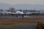 TOPAZ102さんが、伊丹空港で撮影した日本航空 787-8 Dreamlinerの航空フォト(写真)