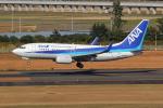 kunimi5007さんが、仙台空港で撮影した全日空 737-781の航空フォト(写真)