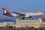 板付蒲鉾さんが、福岡空港で撮影したハワイアン航空 A330-243の航空フォト(写真)