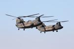 ベリックさんが、木更津飛行場で撮影した陸上自衛隊 CH-47JAの航空フォト(写真)