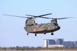 YASKYさんが、木更津飛行場で撮影した陸上自衛隊 CH-47JAの航空フォト(写真)