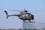YASKYさんが、木更津飛行場で撮影した陸上自衛隊 OH-6Dの航空フォト(写真)