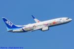 Chofu Spotter Ariaさんが、羽田空港で撮影した全日空 737-881の航空フォト(飛行機 写真・画像)