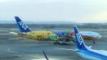 a45_amgさんが、新千歳空港で撮影した全日空 777-281/ERの航空フォト(写真)