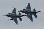 DBACKさんが、築城基地で撮影した航空自衛隊 F-2Aの航空フォト(写真)