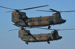 チャーリーマイクさんが、木更津飛行場で撮影した陸上自衛隊 CH-47JAの航空フォト(写真)