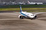 Ariesさんが、羽田空港で撮影した全日空 787-8 Dreamlinerの航空フォト(写真)