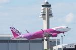 木人さんが、那覇空港で撮影したピーチ A320-214の航空フォト(写真)