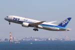 やまけんさんが、羽田空港で撮影した全日空 787-8 Dreamlinerの航空フォト(写真)