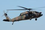 banshee02さんが、木更津飛行場で撮影した陸上自衛隊 UH-60JAの航空フォト(写真)