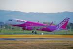 ちゃぽんさんが、鹿児島空港で撮影したピーチ A320-214の航空フォト(飛行機 写真・画像)