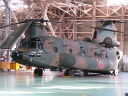 ランチパッドさんが、木更津飛行場で撮影した陸上自衛隊 CH-47JAの航空フォト(飛行機 写真・画像)