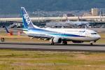 Ariesさんが、伊丹空港で撮影した全日空 737-881の航空フォト(写真)