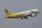 BOEING737MAX-8さんが、成田国際空港で撮影したバニラエア A320-214の航空フォト(写真)