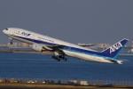 みっしーさんが、羽田空港で撮影した全日空 777-281の航空フォト(写真)