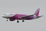 panchiさんが、仙台空港で撮影したピーチ A320-214の航空フォト(写真)