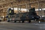 sepia2016さんが、木更津飛行場で撮影した陸上自衛隊 CH-47JAの航空フォト(写真)
