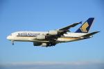 ITM58さんが、成田国際空港で撮影したシンガポール航空 A380-841の航空フォト(写真)