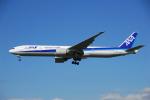 ITM58さんが、成田国際空港で撮影した全日空 777-381/ERの航空フォト(写真)
