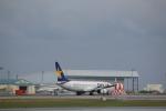 7915さんが、那覇空港で撮影したスカイマーク 737-8HXの航空フォト(写真)