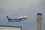 7915さんが、那覇空港で撮影したANAウイングス 737-54Kの航空フォト(写真)