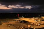 ☆ライダーさんが、成田国際空港で撮影したデルタ航空 A330-941の航空フォト(写真)