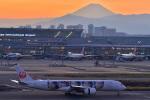 HISAHIさんが、羽田空港で撮影した日本航空 A350-941XWBの航空フォト(写真)