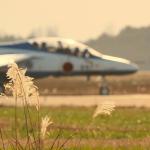 NOCKsさんが、茨城空港で撮影した航空自衛隊 T-4の航空フォト(飛行機 写真・画像)